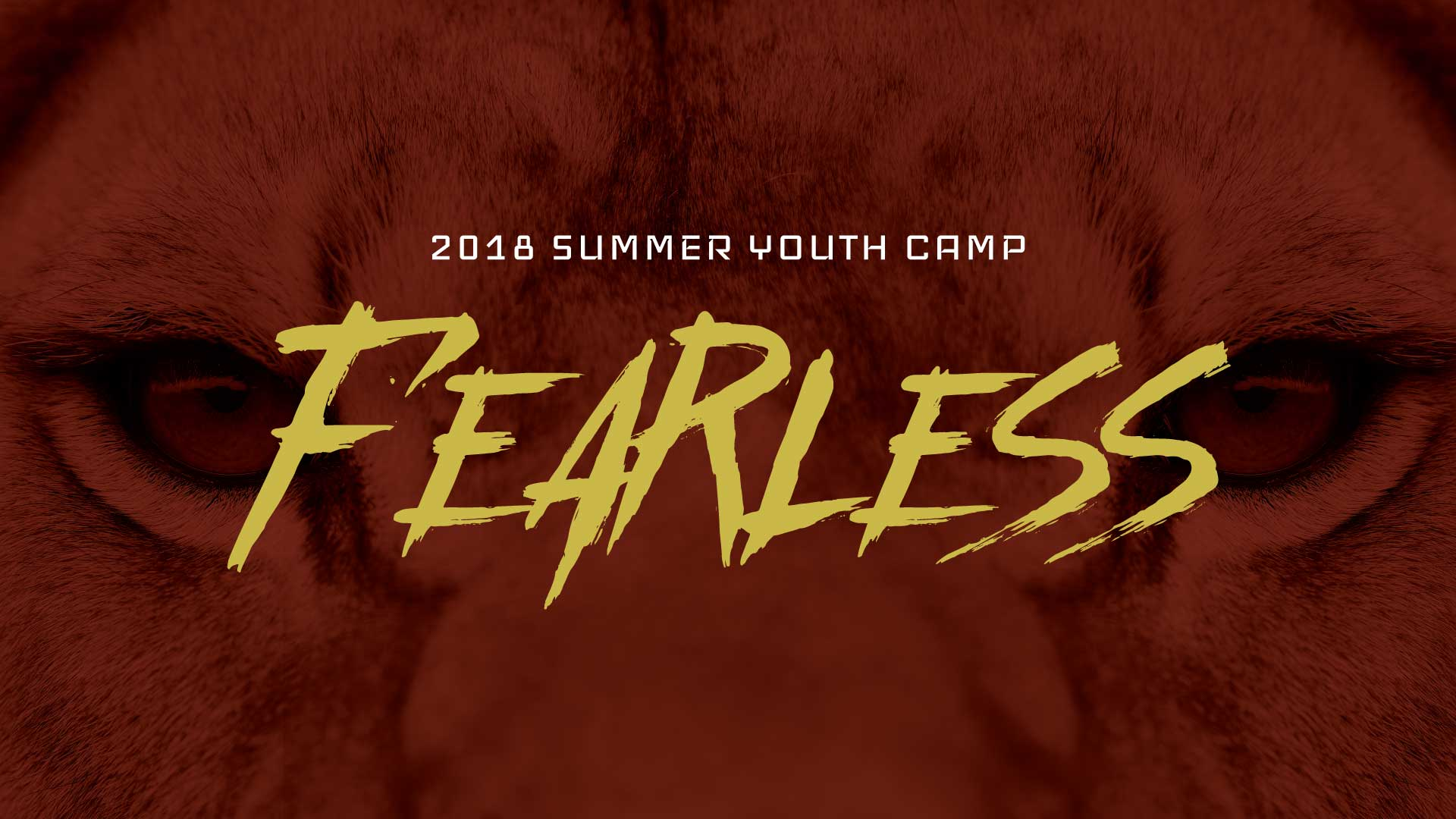 Fearless Christian Youth Camp